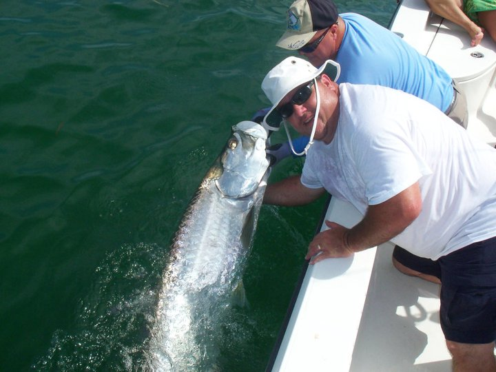 Tarpon fishing cape coral boca grande tarpon fishing for Cape coral fishing charters