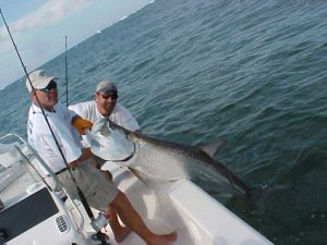 Fort Myers Beach Tarpon